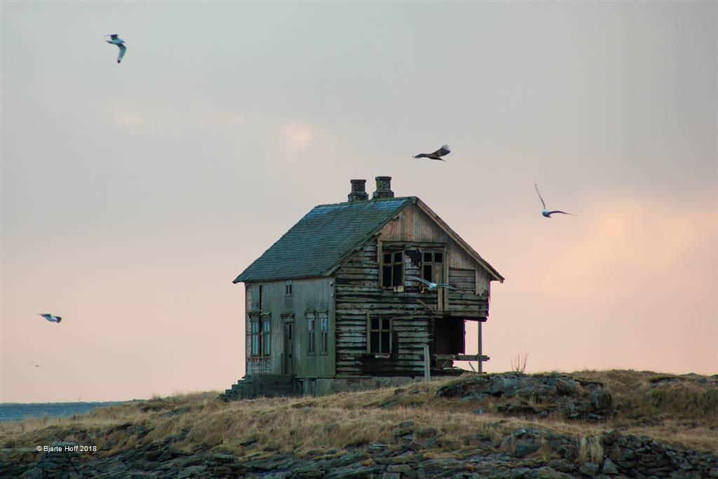 Bjarte Hoff – Orn over Toralfhuset – Open Colour