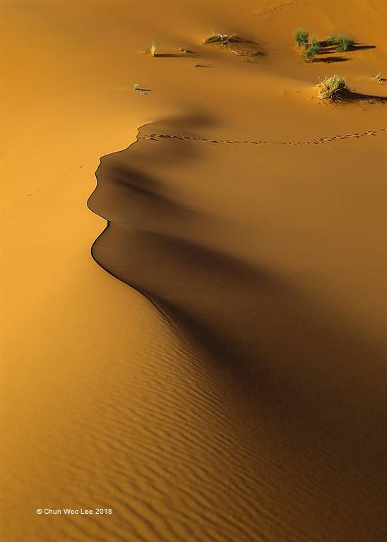 Chun Woo Lee – Tears of the Sahara Woman – Open Colour