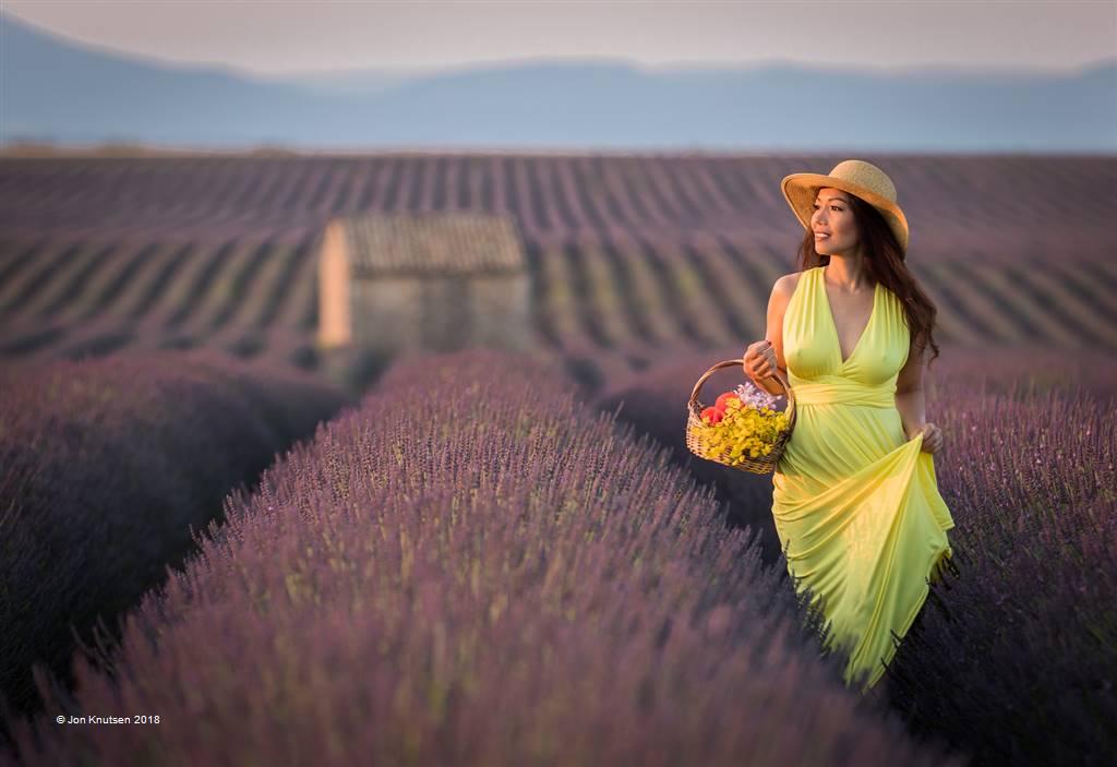 Jon Knutsen – Morning Walk in Lavender Field – Open Colour