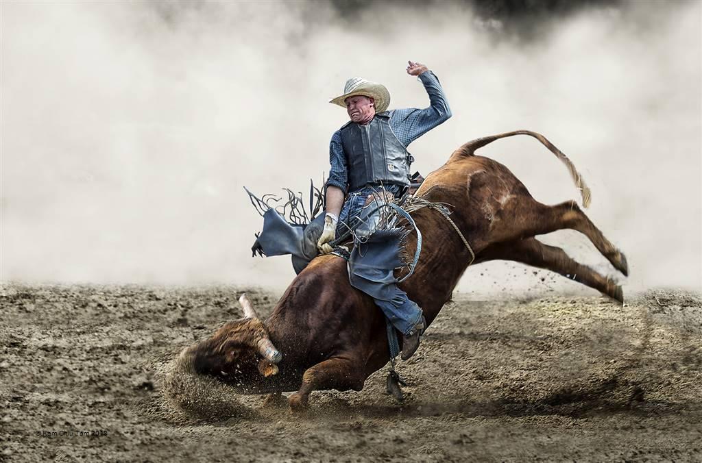 Kam Chiu Tam – Bullfighter – Open Colour
