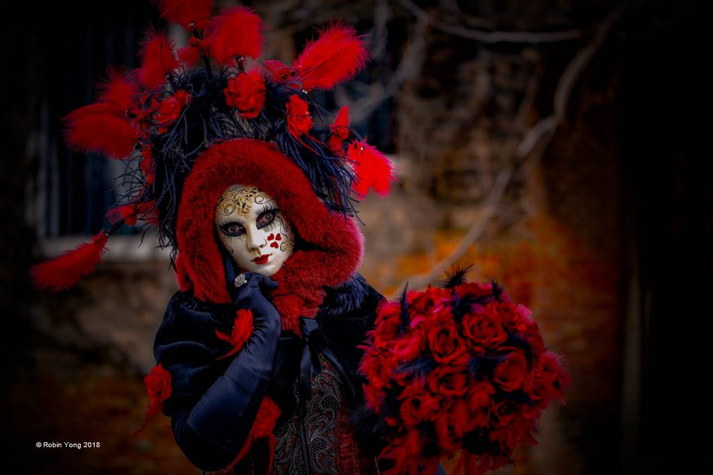 Robin Yong – The Venetian Red Rose – Open Colour