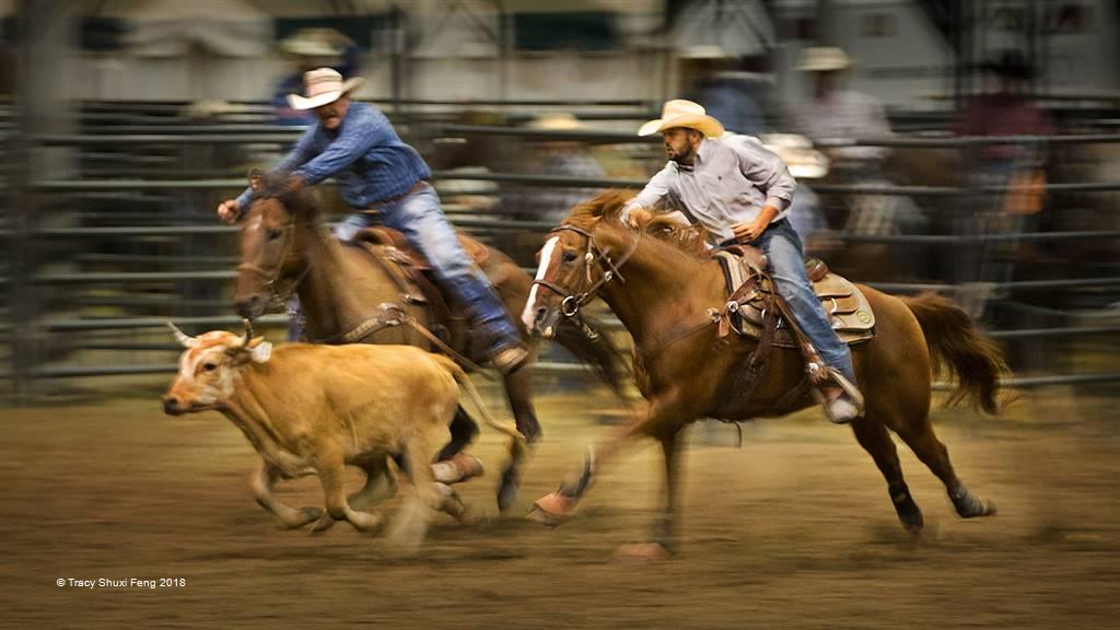 Tracy Shuxi Feng – Steer Wrestling 1601 – Photo Travel