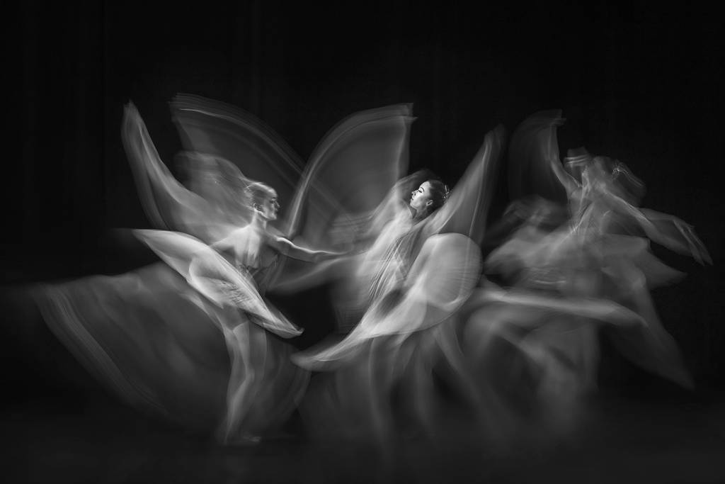 4Tracy Shuxi Feng_Graceful Waving_PSA Ribbon_EPSA_Projected Digital Images Open Monochrome