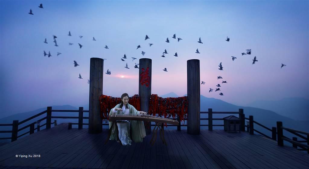 Yiping Xu – Guzheng – Open Colour